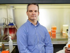 Researcher, students study cell death in search for cancer cure
